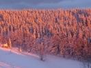 Winterbilder_49