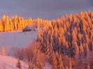 Winterbilder_50